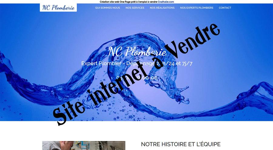 Vente site internet de Plombier de quartier